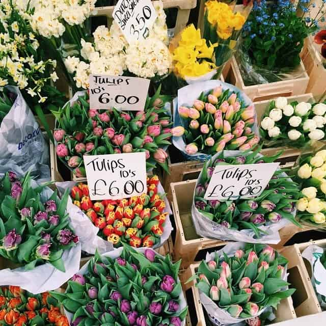 Flowers for your Monday morning What are you looking forwardhellip
