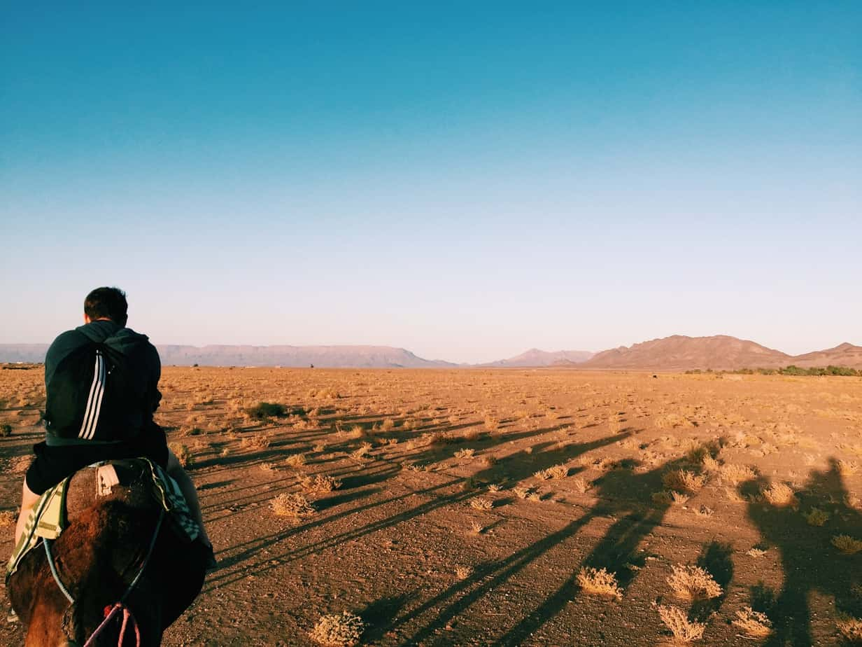 essays on deserts Free example of descriptive sample essay on the physical geography of the mohave desert custom-essaysorg custom as all of the four deserts share ground.