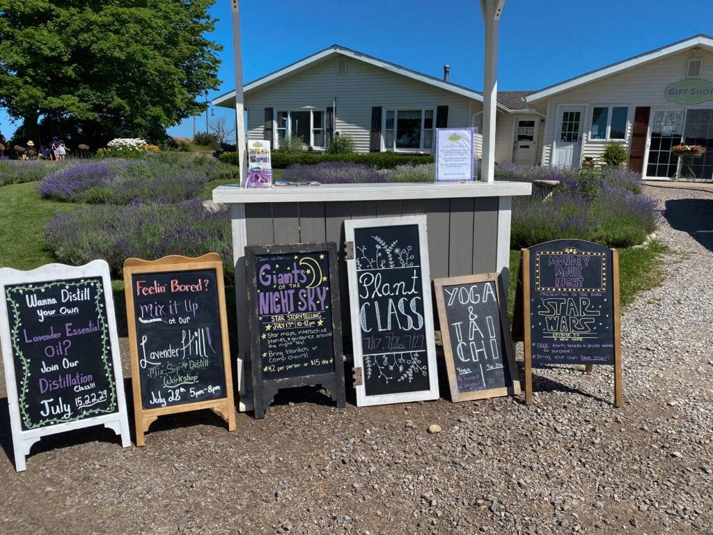 Events at lavender hill farm in michigan
